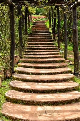 stairway_in_garden_by_anankkml_of_freedigitalphotosdotnet